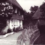 Hockley cottage with roses