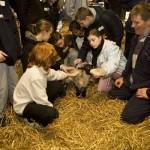 Matt Atksinson with children and lambs