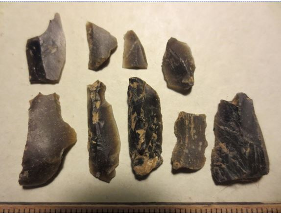 Mesolithic flints