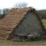 Reconstruction of Saxon dwelling with the roof at ground level.