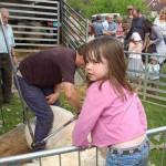 Girl at Sheep Shearing