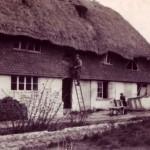 Thatcher at work on Hockley Cottage