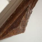 Tudor House, Truss beam, carving